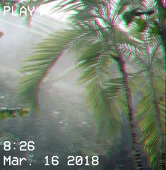 M O O N V E I N S 1 0 1 #vhs #aesthetic #green #glitch #plants