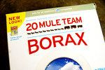 What Is the Ratio of Borax & Salt for Killing Fleas? | eHow