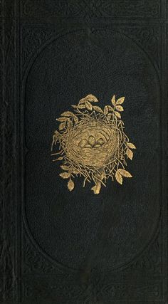 Gold bird nest on cover of 'A Natural History of the Nests and Eggs of British Birds' by Rev. Published 1870 by Bell & Daldy arc. Book Cover Art, Book Cover Design, Book Design, Book Art, Vintage Book Covers, Vintage Books, Old Books, Antique Books, Historia Natural