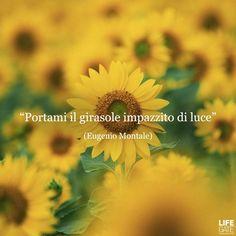 Italian Phrases, Italian Words, Italian Quotes, Poetry Quotes, Art Quotes, Love Quotes, Movie Co, Freedom Life, Artist Journal