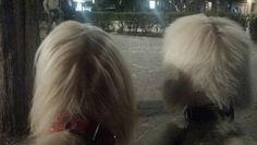 Lucy & Aghata