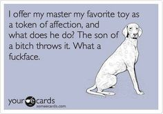 Excuse the language but I'm pretty sure this is what my dogs are thinking as I'm trying to teach them 'fetch'.