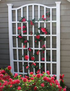 The New England Arbors White Vinyl Grande Arch Trellis is an elegant solution to any yard space question. Made of high-grade PVC vinyl material that. New England Arbors, Arbors Trellis, Garden Trellis, Rose Trellis, Trellis Ideas, White Trellis, Diy Trellis, Privacy Trellis, Metal Trellis