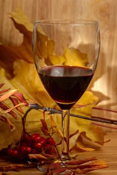 10 Wines for Fall Foods