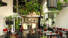 hanging vegetable garden café by: http://www.oatmealstudio.nl