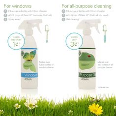 My favorite green cleaner!  Basic H2.. You can make a bottle of window cleaner for less than a penny.