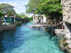 Waikiki Aquarium in Oahu, Hawaii. I was part of a show and got kissed by a sea lion.