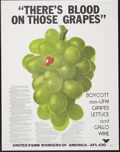 There's Blood on Those Grapes - Boycott non-UFW grapes, lettuce, and gallo wine - On 9/8/1965, Filipino American grape workers walked out on strike against Delano, CA, table & wine grape growers, protesting years of poor pay & working conditions. Latino farm workers soon joined them & the strike & subsequent boycott lasted more than 5 years. In 1970, growers signed their first union contracts w/ the UFW union, which included better pay, benefits & protections.