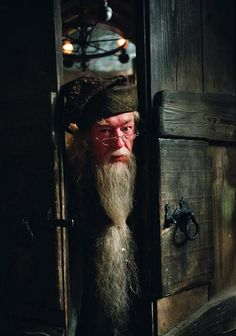 Professor Dumbledore, Harry Potter, movie, beard, great face, glasses, rustic wooden door, photo