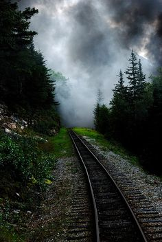Into the Misty Mountains by Ronald Campbell, Mystic, Alaska By Train, Train Tracks, Images Gif, Old Trains, All Nature, Pathways, Beautiful World, Beautiful Images, That Way