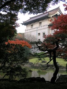 Tokyo National Museum ~ The oldest Japanese national museum and the largest art museum in Japan.        http://www.tnm.jp/