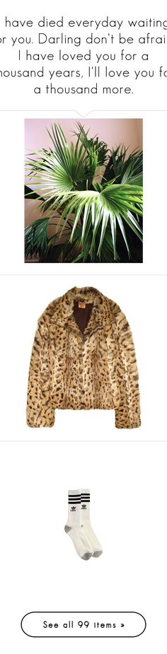 """""""I have died everyday waiting for you. Darling don't be afraid, I have loved you for a thousand years, I'll love you for a thousand more."""" by bitofbritt ❤ liked on Polyvore featuring pictures, photos, summer, outerwear, jackets, coats, fur, women, brown jacket and leopard print jacket"""