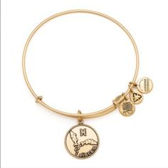 Pisces Alex and Ani Bracelet Pisces Alex and Ani bracelet in gold! Never been worn. New without tags. Super cute birthday gift! Willing to negotiate price or trade. Alex & Ani Jewelry Bracelets