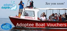 Get vouchers to come and visit the dolphins when you become an Adoptee!!