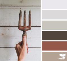 color dig