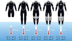 Infographic to help you to choose which wetsuit to bring in your luggage on your next dive trip. #scubadivingquotesunderwater