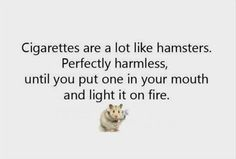 Thankfully never mistook the late Hairy Harry Hamster for a ciggy, no matter how drunk i got.