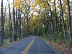 Fall in Dubois County Indiana