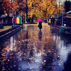 Осень в Новосибирске
