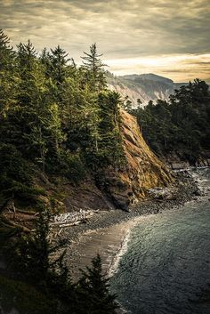 """Shore Acres State Park 