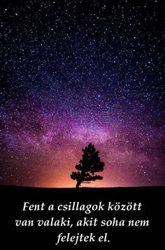 Space: Milky Way, Stars and the Tree – Galaxy Art Beautiful Sky, Beautiful Places, Landscape Photography, Nature Photography, Astronomy Photography, Milky Way Stars, Sky Full Of Stars, Galaxy Art, Galaxy Wallpaper
