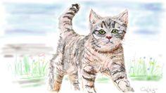 Mein erstes Kätzchen Digitale Pastellzeichnung www.zeichenwerkstatt-cw.de