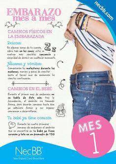 """infografía para pinterest NecBB """"El embarazo mes a mes"""" (Mes 1):"""