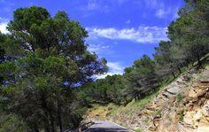 Montes de Malaga, Malaga - Costa del Sol (Espagne)