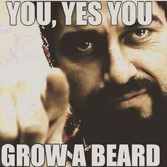 We all know what happens to people who disobey Leonidas. He also says to check out HighWest Beard for the best beard care products anywhere. Click the link in the bio! #beards #kingshavebeards #growabeard #beardon #highwestbeard #beardcare #beardsarebest