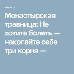 Монастырская травница: Не хотите болеть — накопайте себе три корня —