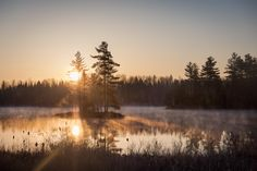 Was up early shooting the stars and was treated to this misty sunrise near Bancroft Ontario Canada [OC][3000x2000]