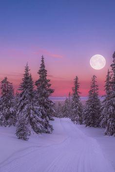yuletide-blessings:merry full cold moon✨