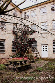 Abandon children's ward courtyard at the old Oregon State Mental Hospital, Salem Oregon, Dawn Nielson