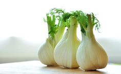 Want to try growing fennel this spring season? Grow fennel with this complete growing guide and all you need to know about this healthy veggie! Winter Vegetables, Fresh Vegetables, Veggies, Growing Vegetables, Growing Fennel, Fennel Essential Oil, Essential Oils, Foeniculum Vulgare, Troubles Digestifs