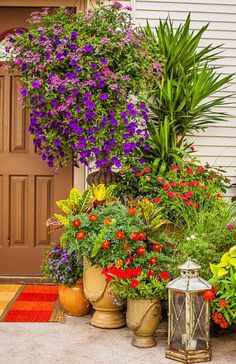 Create a welcoming entrance with container pots. Details: http://www.midwestliving.com/garden/featured-gardens/container-gardens-with-pizzazz/?page=2