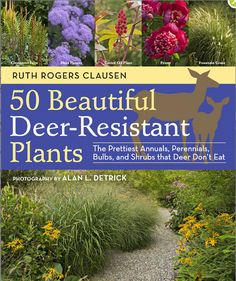 50 Beautiful Deer-Resistant Plants: The Prettiest Annuals, Perennials, Bulbs, and Shrubs that Deer Don't Eat by Ruth Rogers Clausen. A catalog of lovely plants to keep your garden attractive yet unpalatable to deer to keep them out. Deer Resistant Landscaping, Deer Resistant Garden, Deer Resistant Perennials, Deer Proof Plants, Deer Resistant Flowers, Plants That Repel Deer, Planting Bulbs, Planting Flowers, Flower Gardening