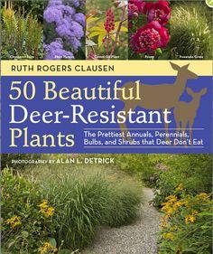 Planting Deer-Resistant Gardens is Possible : TreeHugger