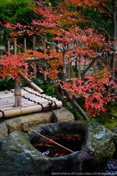 autumn in Japan Japanese Garden Style, Asian Garden, Japanese Beauty, Japanese Gardens, Statues, Gnome Garden, Kyoto Japan, Japanese Culture, Wabi Sabi