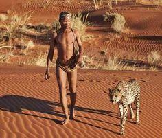 CHEETAH and San man  Kalahari desert