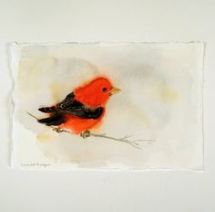 Red Bird Art, Animal Art - Bird Painting, Bird Watercolor, Animal Print, - Men Women Kids - Red Black Nature - Artwork. $20.00, via Etsy.