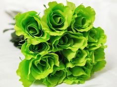 Bunch of Single Stem Lime Roses...good price
