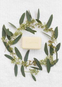 Infused with CPTG® Grapefruit and Bergamot essential oils, the doTERRA SPA Moisturizing Bath Bar is a one-of-a-kind bar that provides a unique feel, lather, aroma, and cleansing experience. Bergamot Essential Oil, Grapefruit Essential Oil, Kind Bars, Essential Oils For Kids, Oil Shop, Body Is A Temple, Spa, Carrier Oils, Doterra Essential Oils