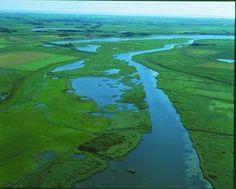 River Vida