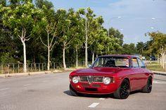 Alfa Romeo GT.