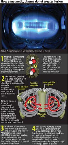 How a magnetic plasma donut creates fusion. Mmmmm... donuts.