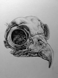Bird Skull ink on paper 9.5x10cm                                                                                                                                                     More