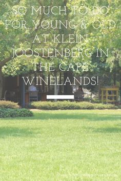 Things to do at Klein Joostenberg in the Cape Winelands! Home to Klein Joostenberg Deli and Bistro, Ludwig's Roses, Stellenbosch Brewing Company and. Cape Town Holidays, Young Old, Table Mountain, Brewing Company, Deli, Things To Do, National Parks, Roses, Neon Signs