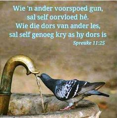 Wie 'n ander voorspoed gun, sal self oorvloed hê. Wie die dors van ander les, sal self genoeg kry as hy dors is Biblical Verses, Bible Verses Quotes, Scriptures, Good Morning Wishes, Morning Messages, Afrikaanse Quotes, Thought For Today, Good Morning Inspirational Quotes, Daughters Of The King