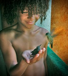 Little boy with gorgeous curly hair holding a little hummingbird in the palm of his hand.