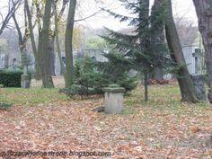 patrząc w jedną stronę: Cmentarz Kamionkowski